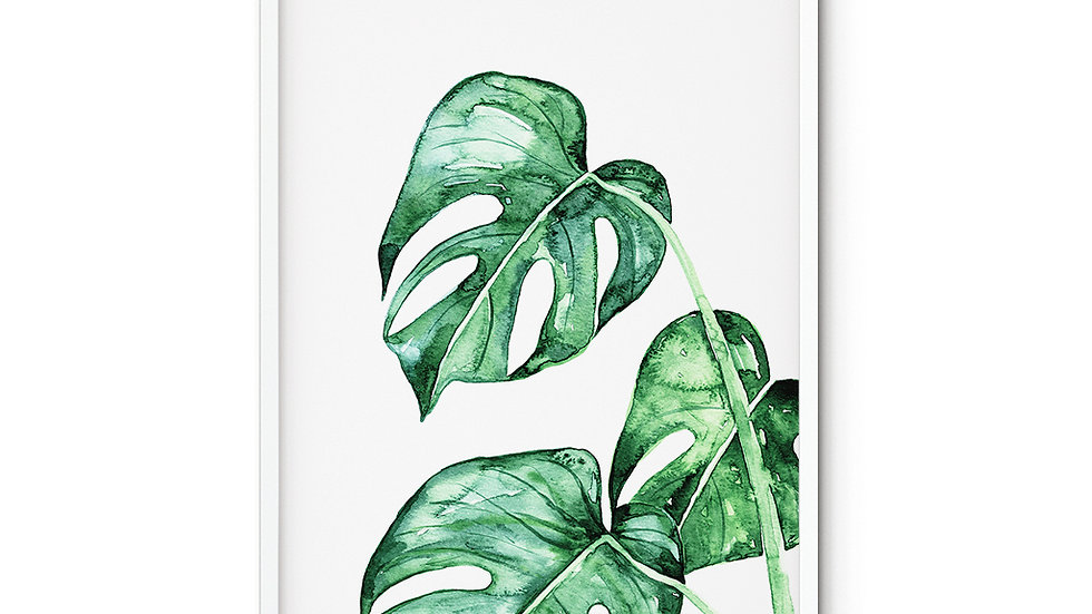 Water colour Print Monstera A5