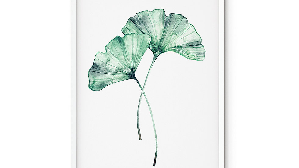 Water colour Print Ginkgo A5