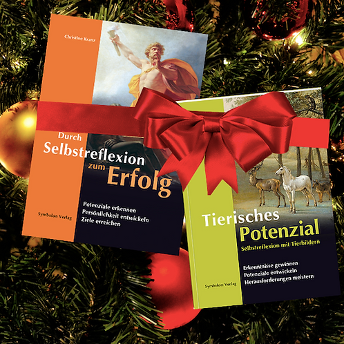 Weihnachtsaktion: Buchpaket