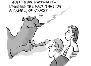 The Card-Sharp Camel