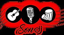 Service DJ mariage, disco mobile et dj animateur a Montreal- Son DJ Logo