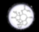 基肽.png