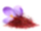 番紅花萃取物.png