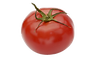 番茄.png