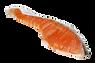鮭魚.png