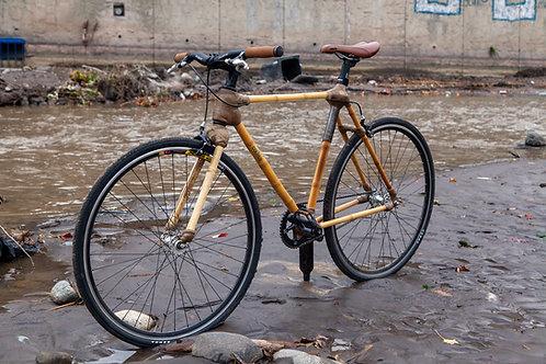 Bicicleta Una Velocidad aro 700