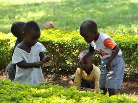 Kinder helfen, ihre Umgebung sauber zu halten