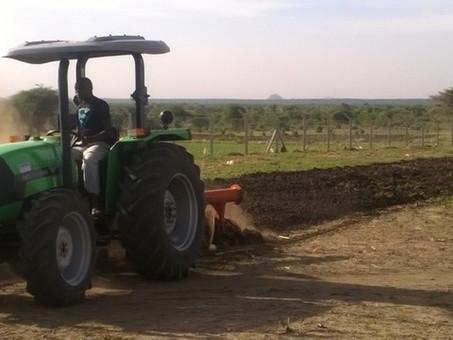 Update Projekt Landwirtschaft in Karamoja