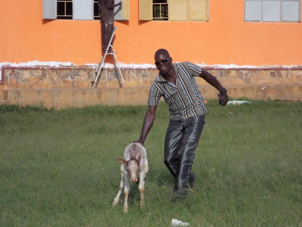 Leben in Kikondo