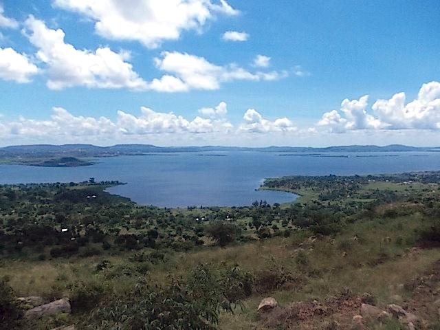 Der Blick auf den Lake Victoria