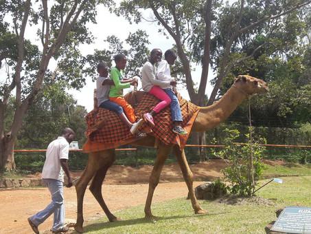 Kinderausflug in den Zoo