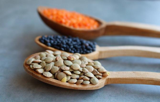 Lentilha e seus benefícios: