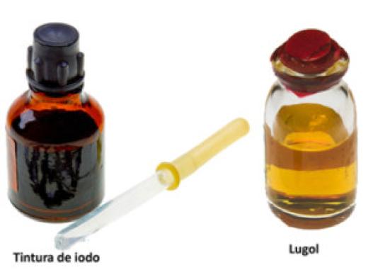 Porque usar a solução de Lugol?