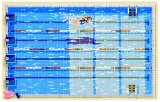 swim life.jpg