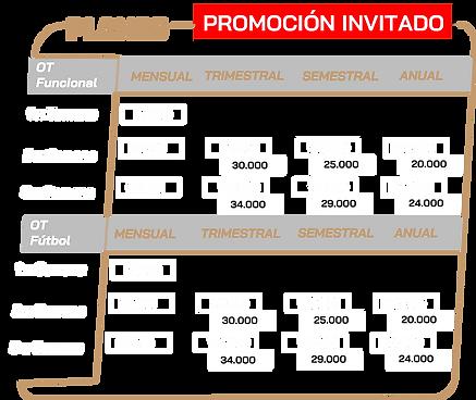 Plan CNCS Invi.png