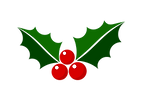 Mistletoe_AdobeStock_236973264 [Converte