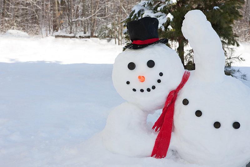 snowman_AdobeStock_77191943_Olga Lyubkin
