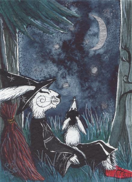 Under the Moonlight...