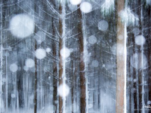 Es schneit! Ich will fotografieren!