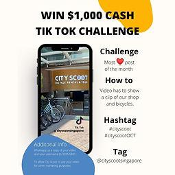 Tik Tok Challenge (20 x 20 cm).jpg