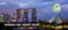 Marina Bay Night Tour banner.jpg