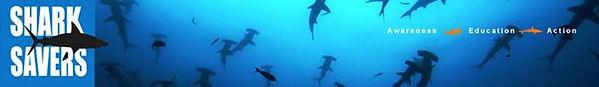 shark savers.jpg