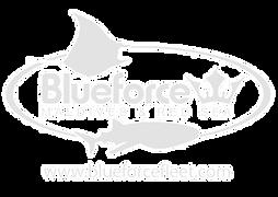 Blue Force Fleet cruceros vida a bordo en el mar rojo y Maldivas