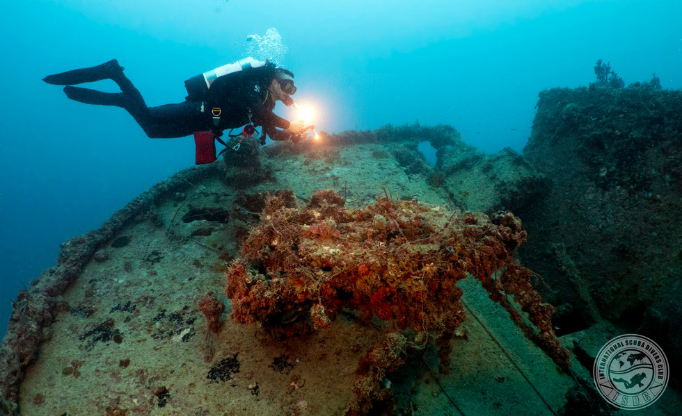 Marcelo on the Narwal Wreck