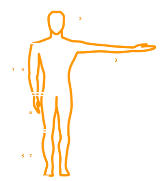bike fitting template.png