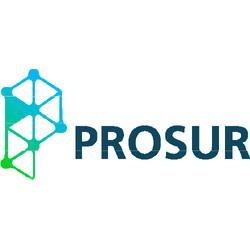 PROSUR Consultoria Ltda