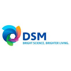DSM South America Ltda