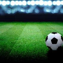 Economic Impact Assessment of Regional Sport Facility