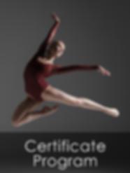 CertificateProgramCard.png