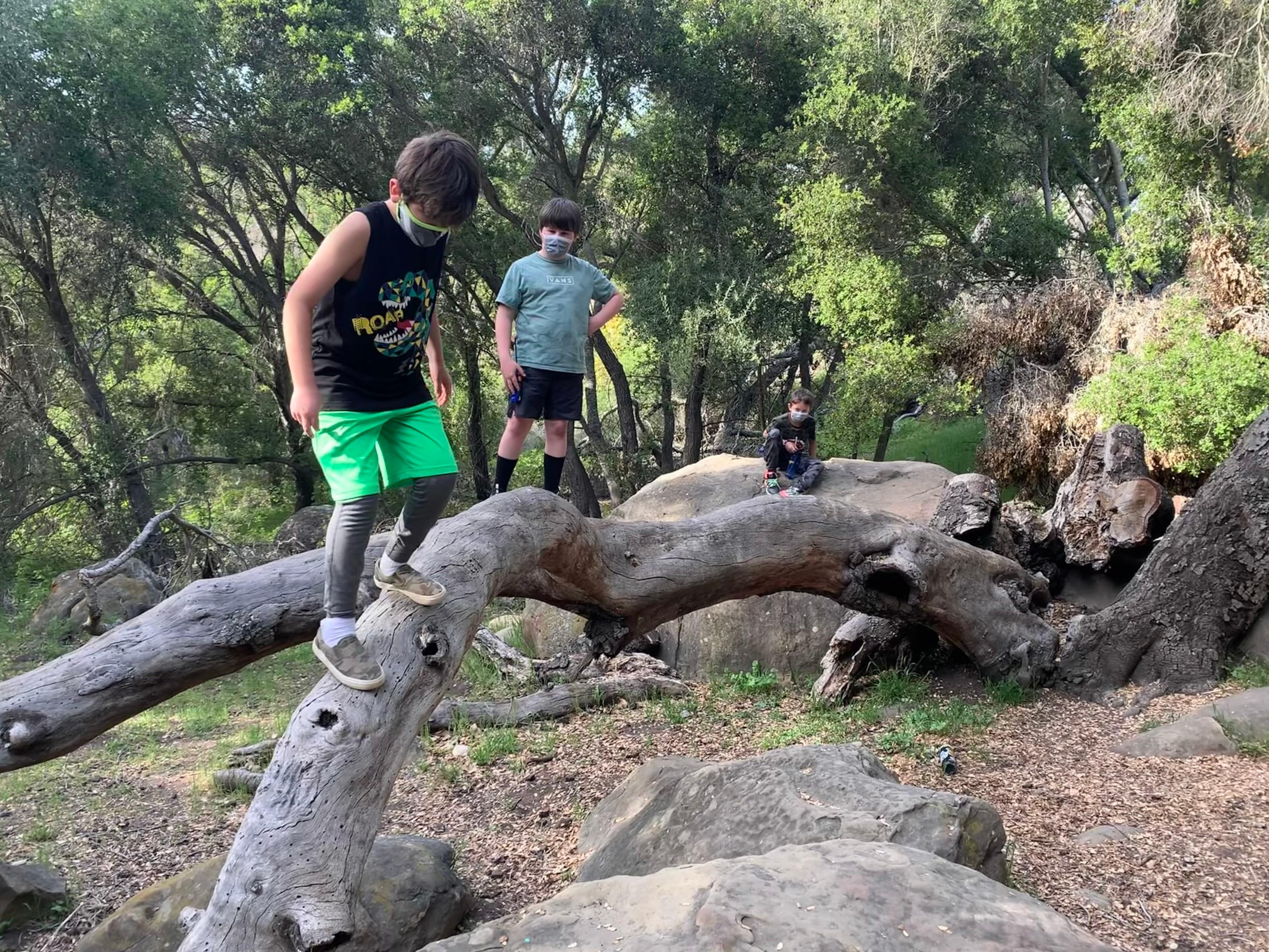 Hiking & Nature Education Camp 9+