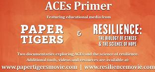 ACE PRIMER.png