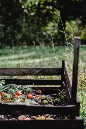 The Benefits of Composting and How to Start at Home