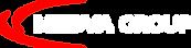 MEDVA group logo_W.png
