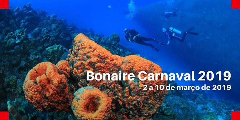 Bonaire Carnaval Banner.png