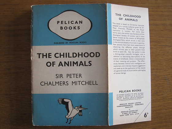 The Childhood of Animals  by  Sir Peter Chalmers Mitchell