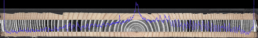 Itrax-analysis-of-wood-1.png