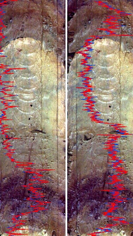 XRF-Oceanographic-sediment-535x815.png