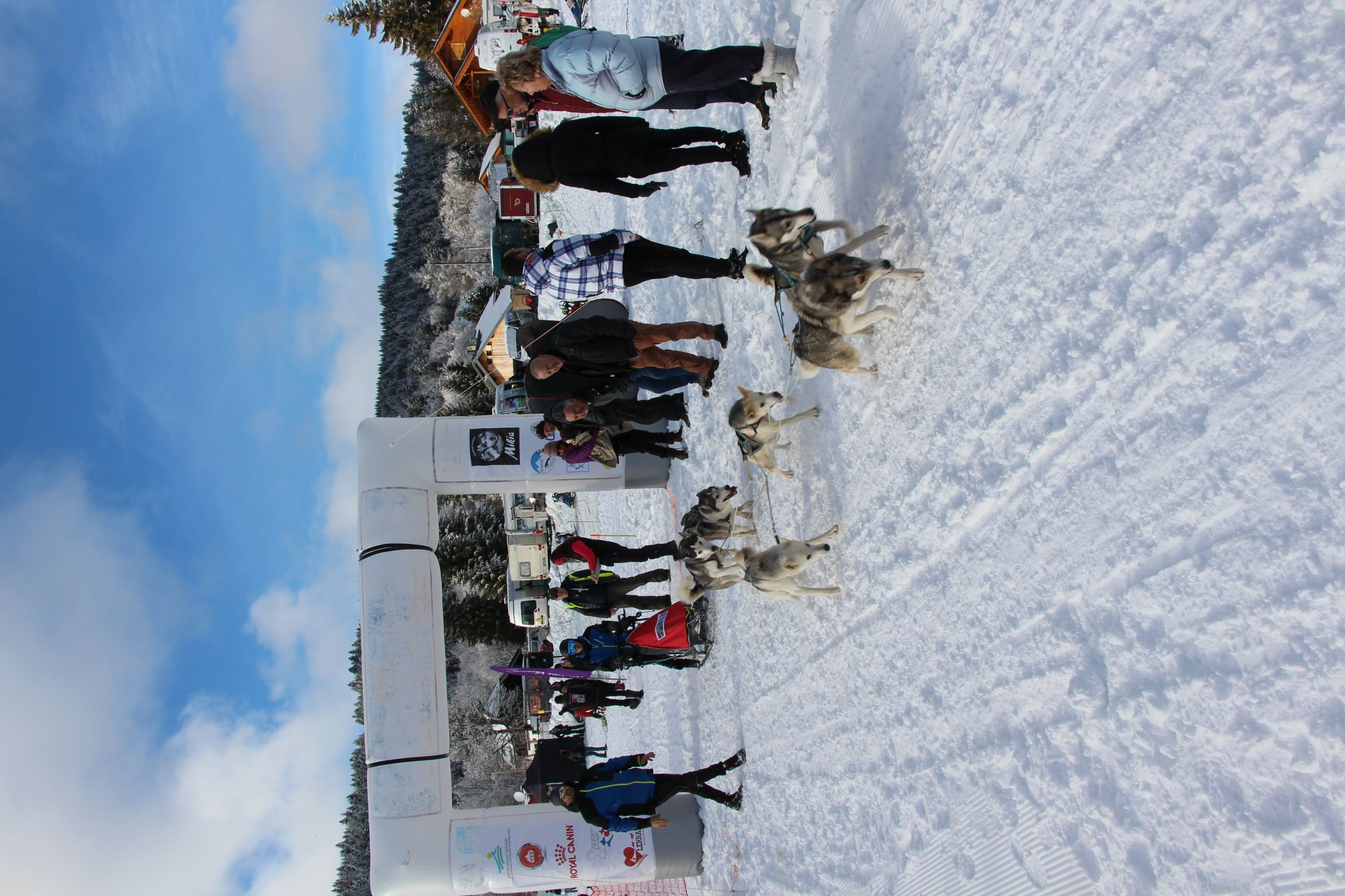 Snowland 2020 LQ (98)