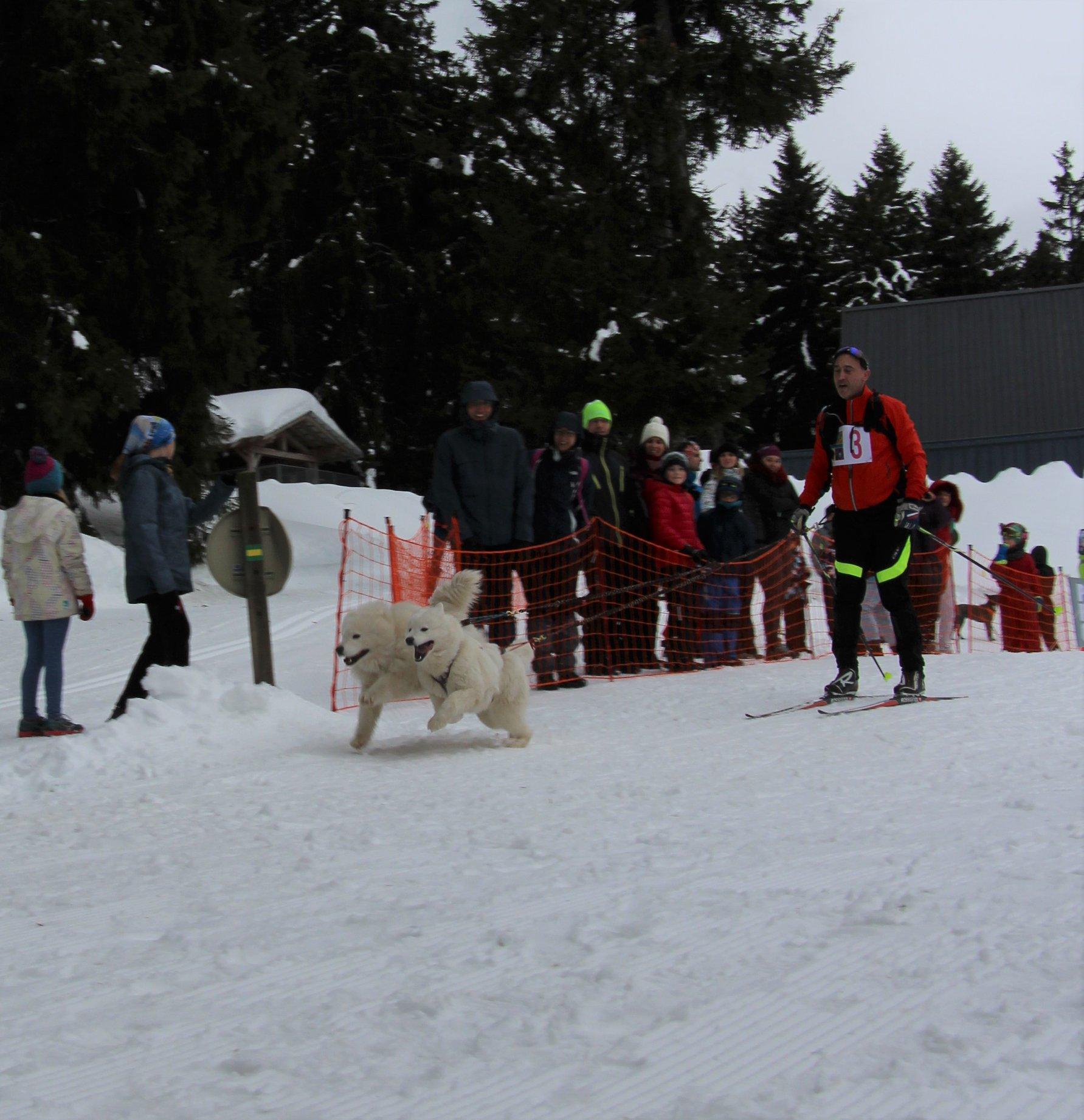Snowland-2019-LQ 093