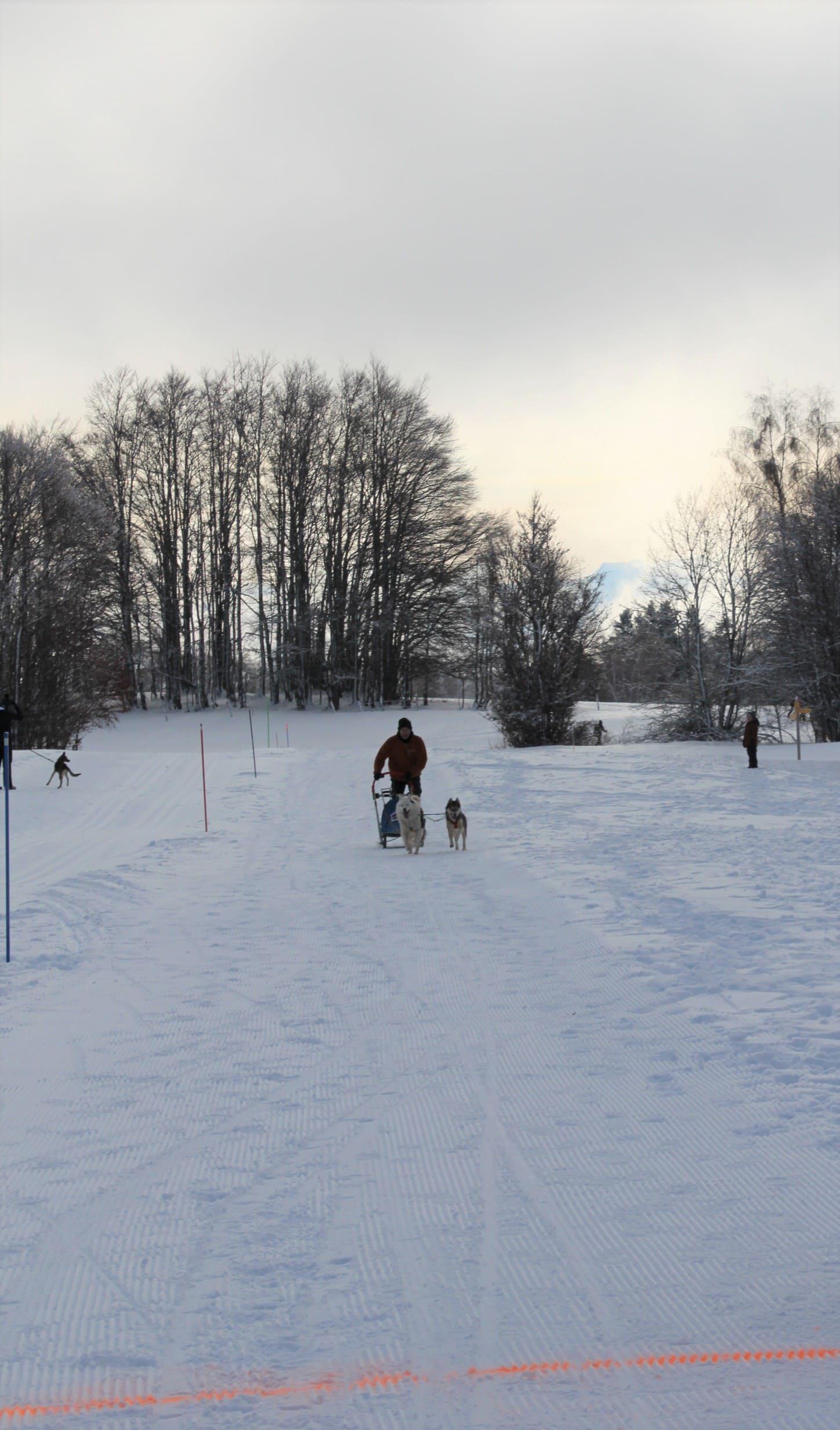 Snowland 2020 LQ (241)