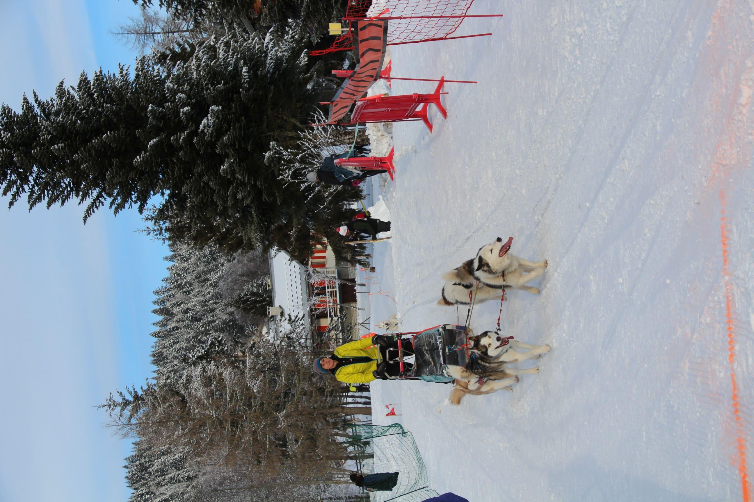 Snowland 2020 LQ (195)