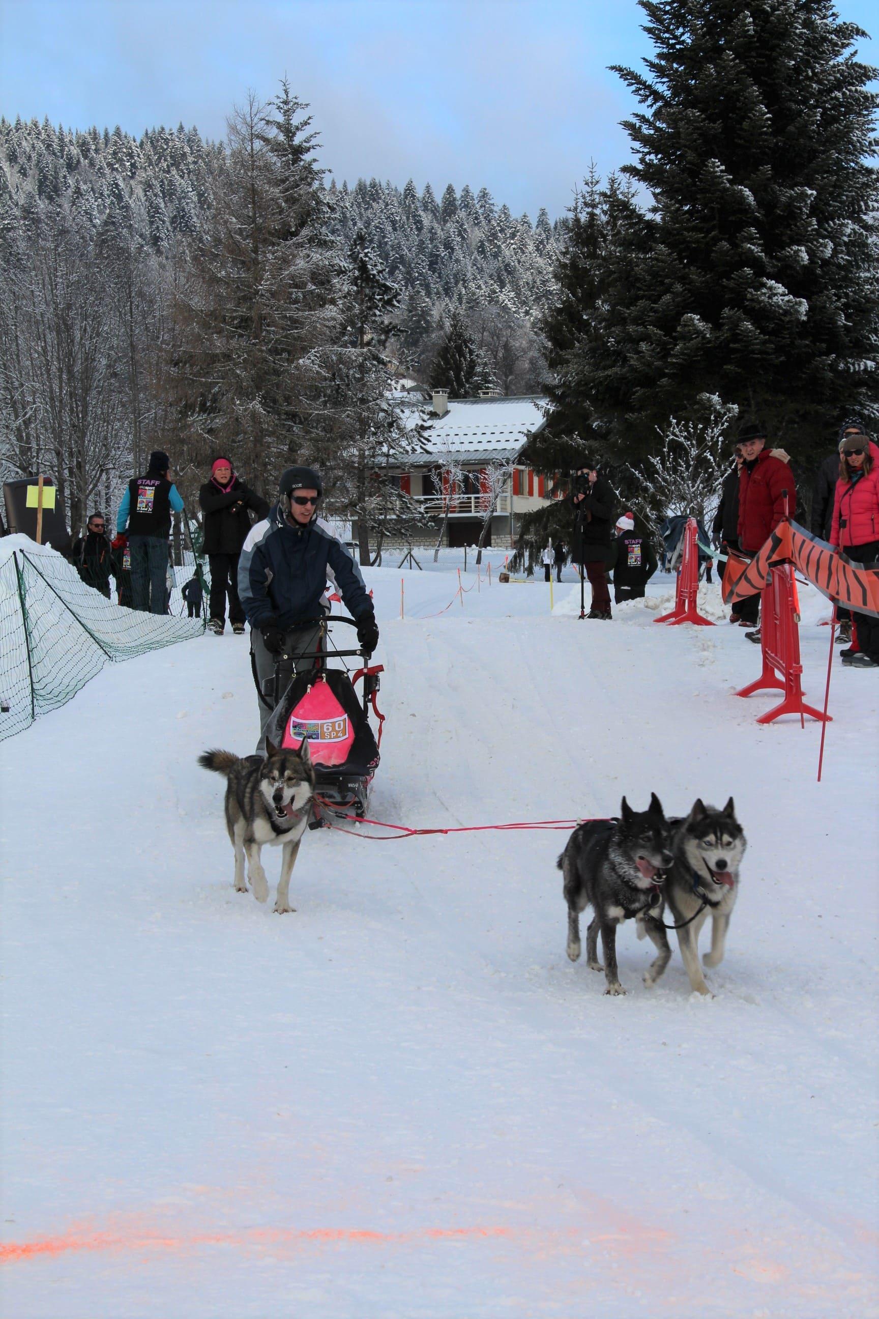Snowland 2020 LQ (242)