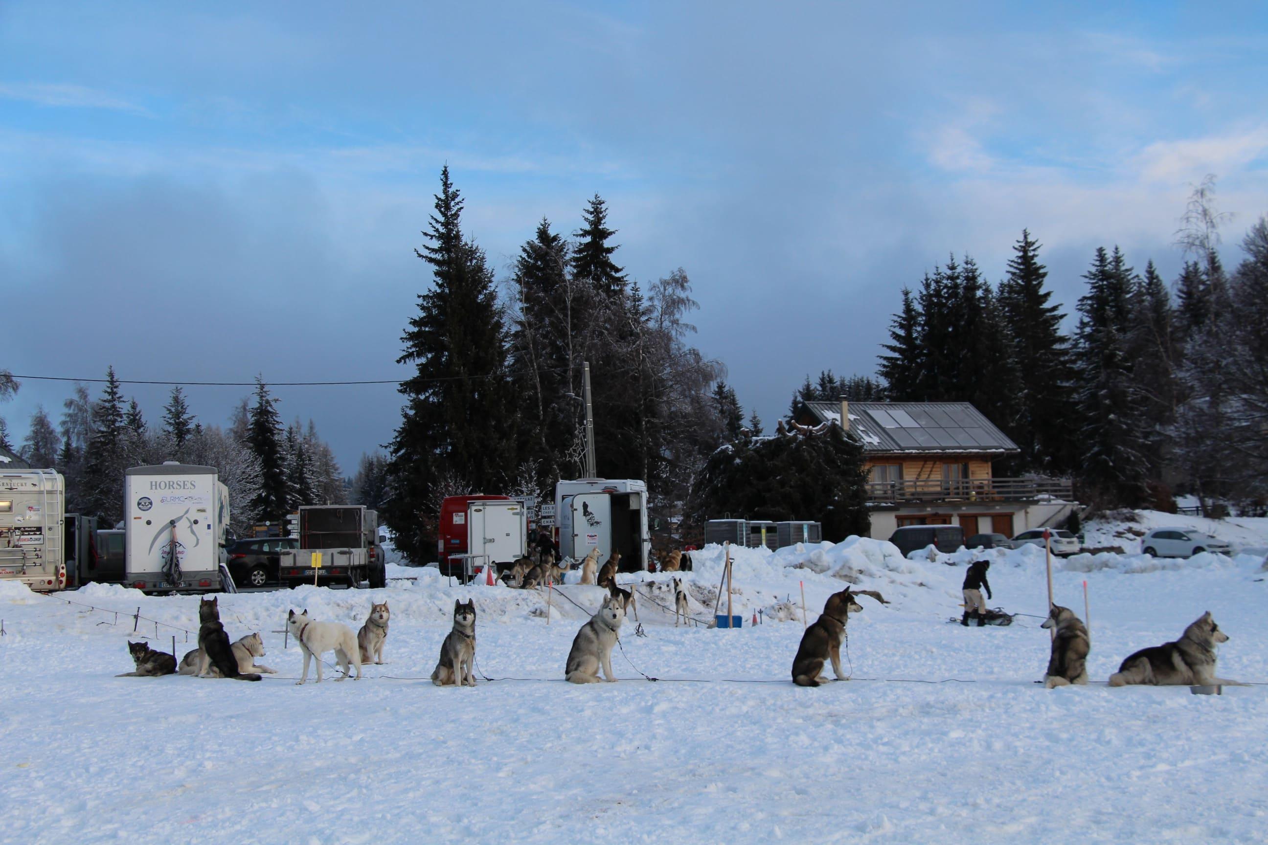 Snowland 2020 LQ (173)