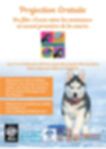 flyer course scolaire projection film A5