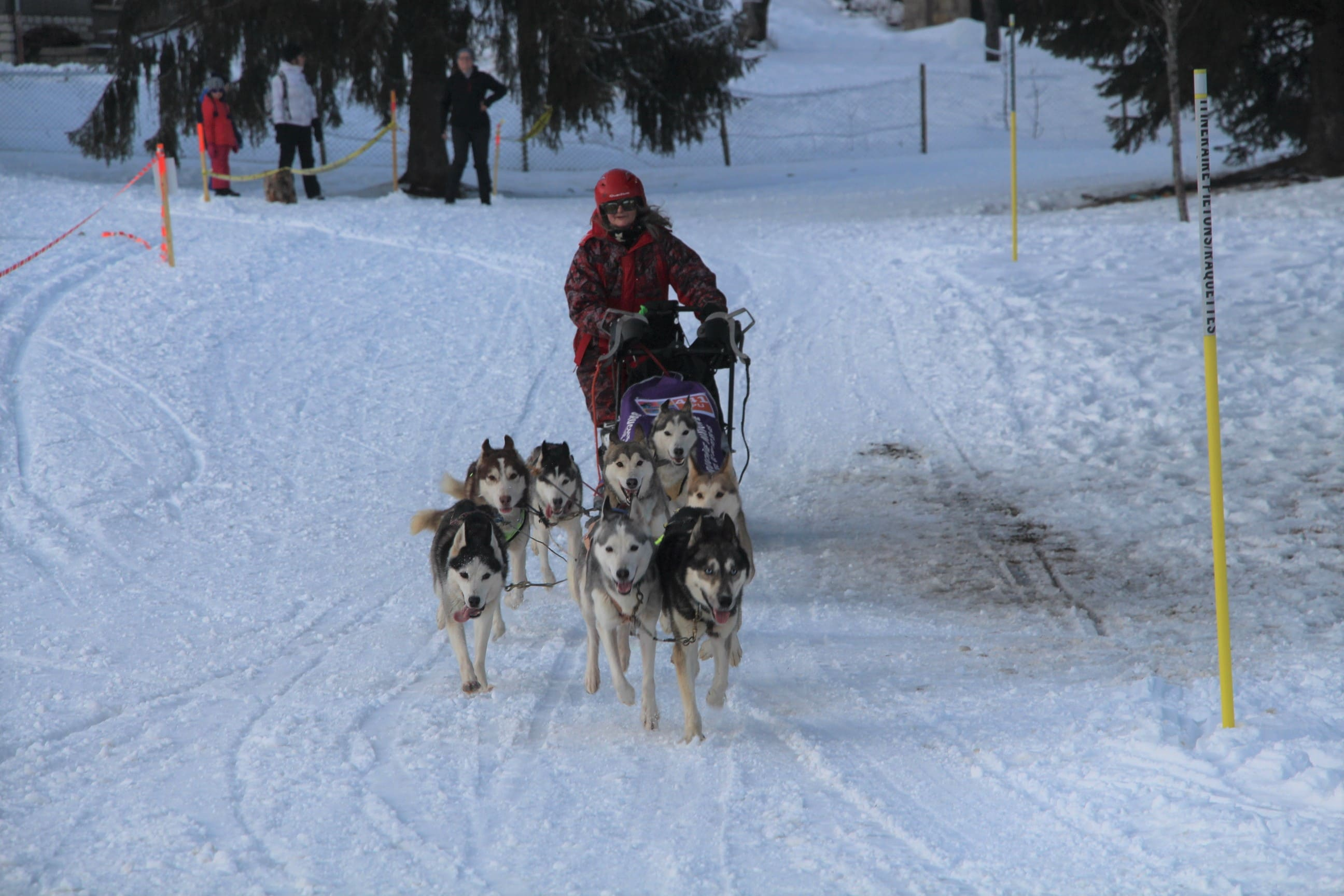 Snowland 2020 LQ (154)