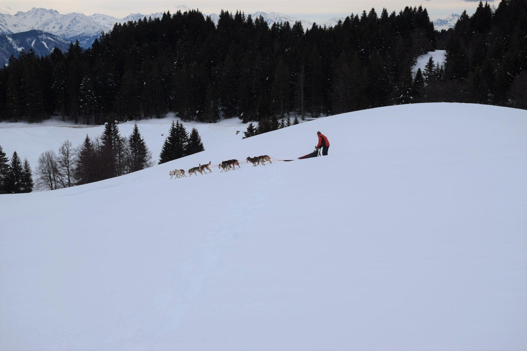 Snowland-2019-LQ 073